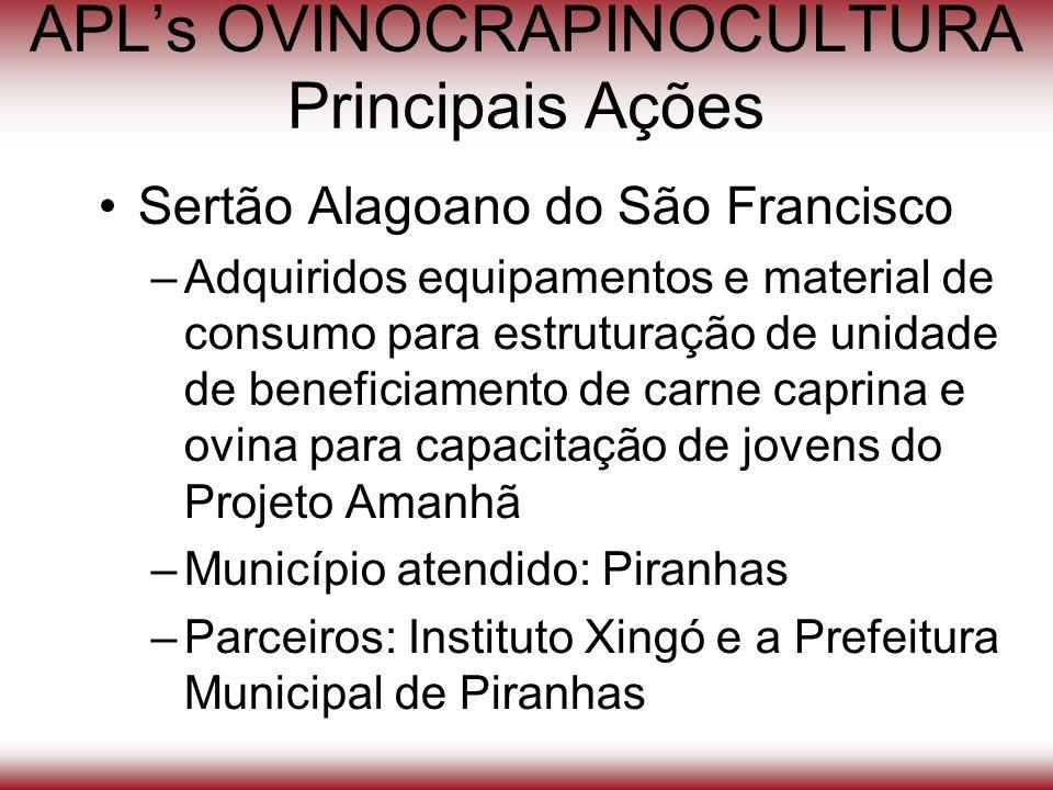 APLs OVINOCRAPINOCULTURA Principais Ações Sertão Alagoano do São Francisco –Adquiridos equipamentos e material de consumo para estruturação de unidade