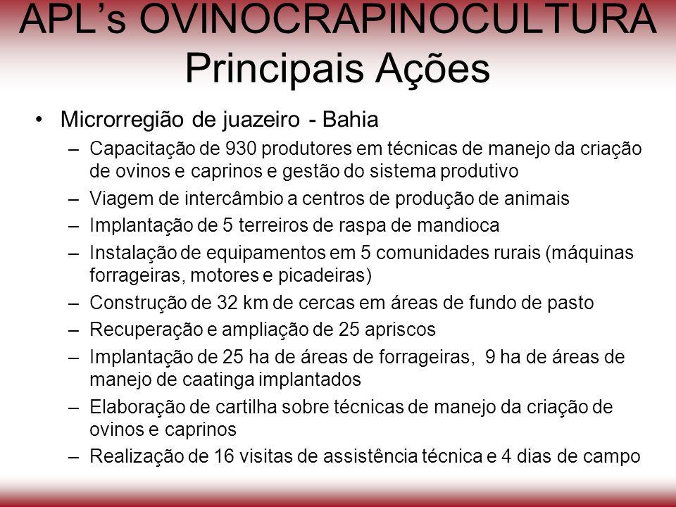 APLs OVINOCRAPINOCULTURA Principais Ações Microrregião de juazeiro - Bahia –Capacitação de 930 produtores em técnicas de manejo da criação de ovinos e
