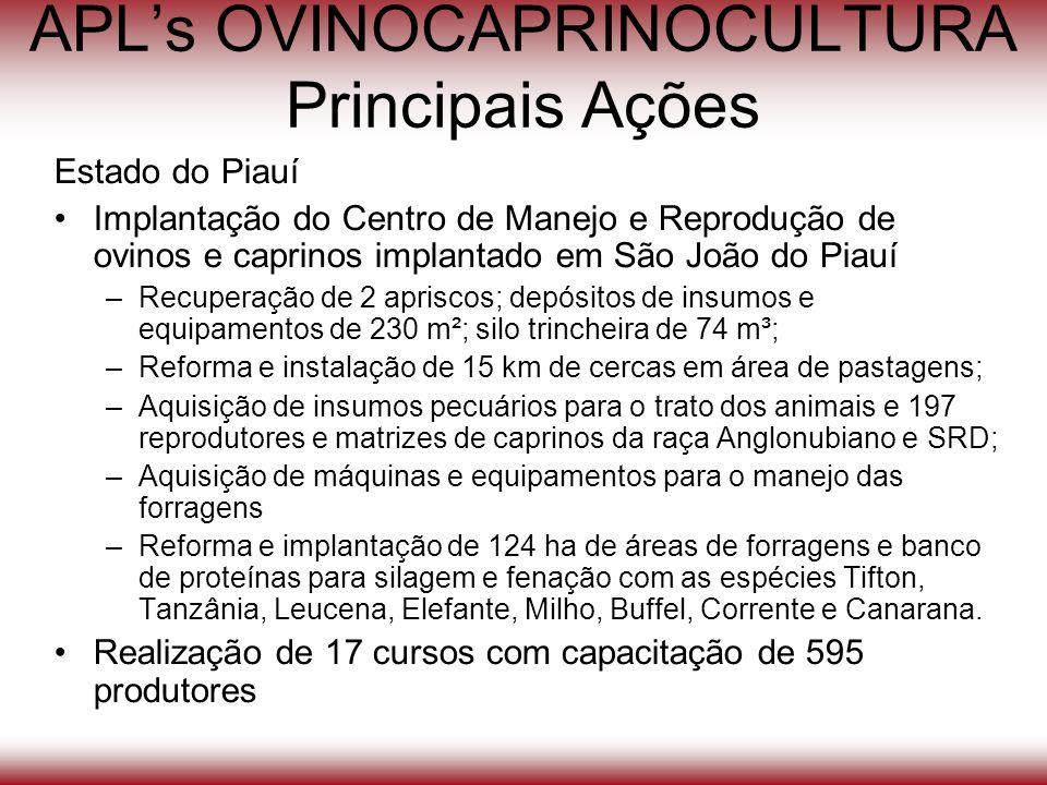 APLs OVINOCAPRINOCULTURA Principais Ações Estado do Piauí Implantação do Centro de Manejo e Reprodução de ovinos e caprinos implantado em São João do
