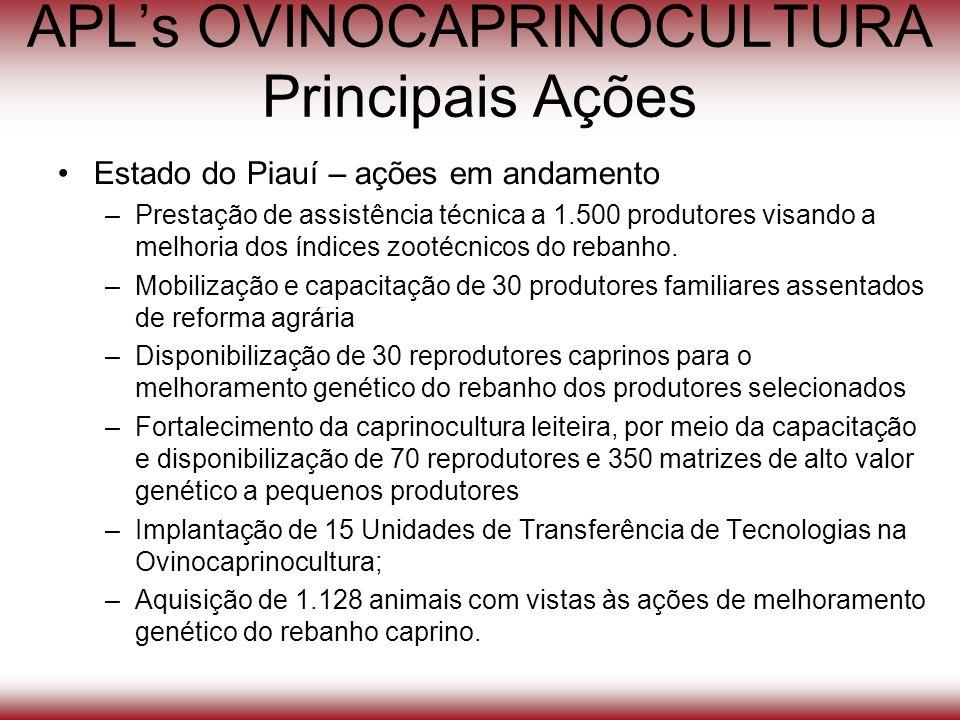 APLs OVINOCAPRINOCULTURA Principais Ações Estado do Piauí – ações em andamento –Prestação de assistência técnica a 1.500 produtores visando a melhoria