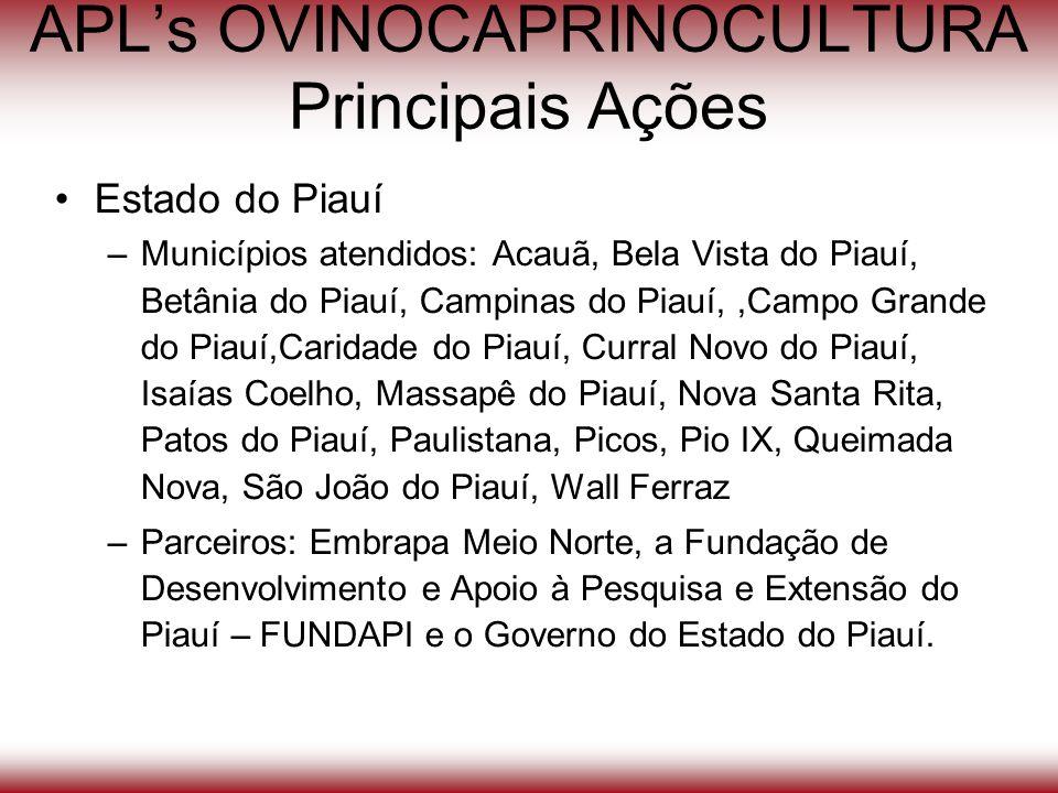 APLs OVINOCAPRINOCULTURA Principais Ações Estado do Piauí –Municípios atendidos: Acauã, Bela Vista do Piauí, Betânia do Piauí, Campinas do Piauí,,Camp