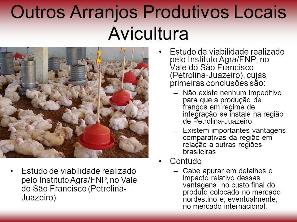 Outros Arranjos Produtivos Locais Avicultura Estudo de viabilidade realizado pelo Instituto Agra/FNP, no Vale do São Francisco (Petrolina-Juazeiro), c