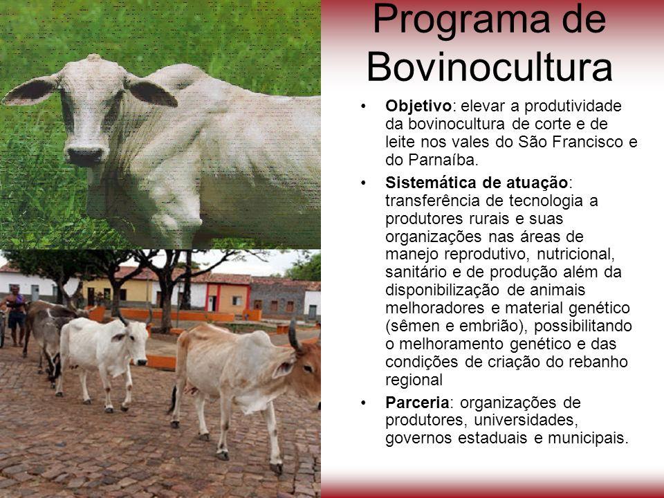 Programa de Bovinocultura Objetivo: elevar a produtividade da bovinocultura de corte e de leite nos vales do São Francisco e do Parnaíba. Sistemática