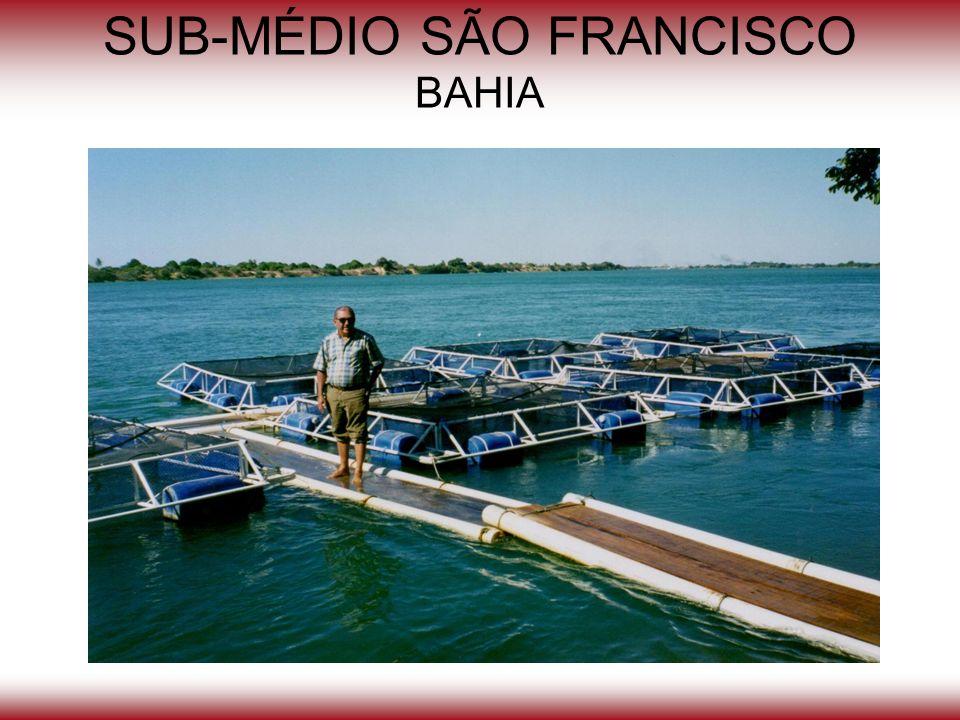 SUB-MÉDIO SÃO FRANCISCO BAHIA