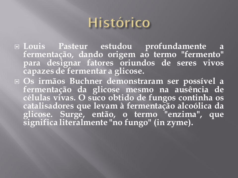 Louis Pasteur estudou profundamente a fermentação, dando origem ao termo