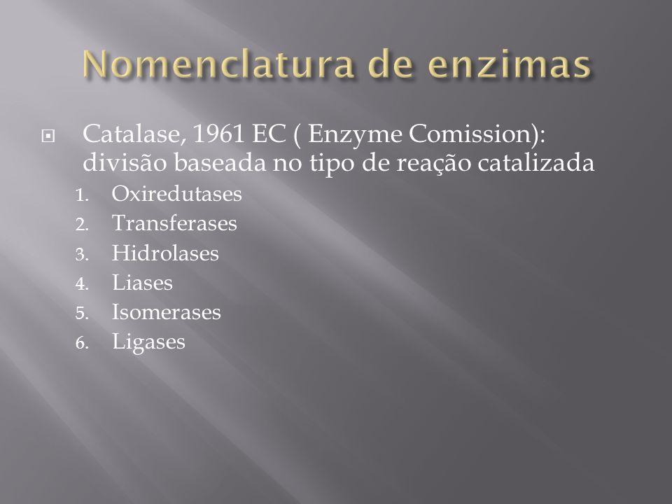 Catalase, 1961 EC ( Enzyme Comission): divisão baseada no tipo de reação catalizada 1. Oxiredutases 2. Transferases 3. Hidrolases 4. Liases 5. Isomera