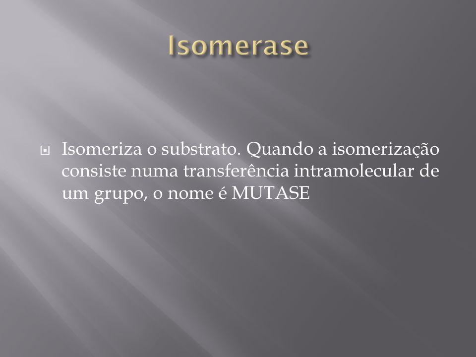 Isomeriza o substrato. Quando a isomerização consiste numa transferência intramolecular de um grupo, o nome é MUTASE