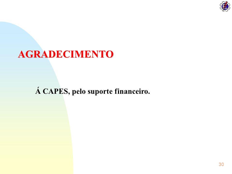 30 AGRADECIMENTO Á CAPES, pelo suporte financeiro.