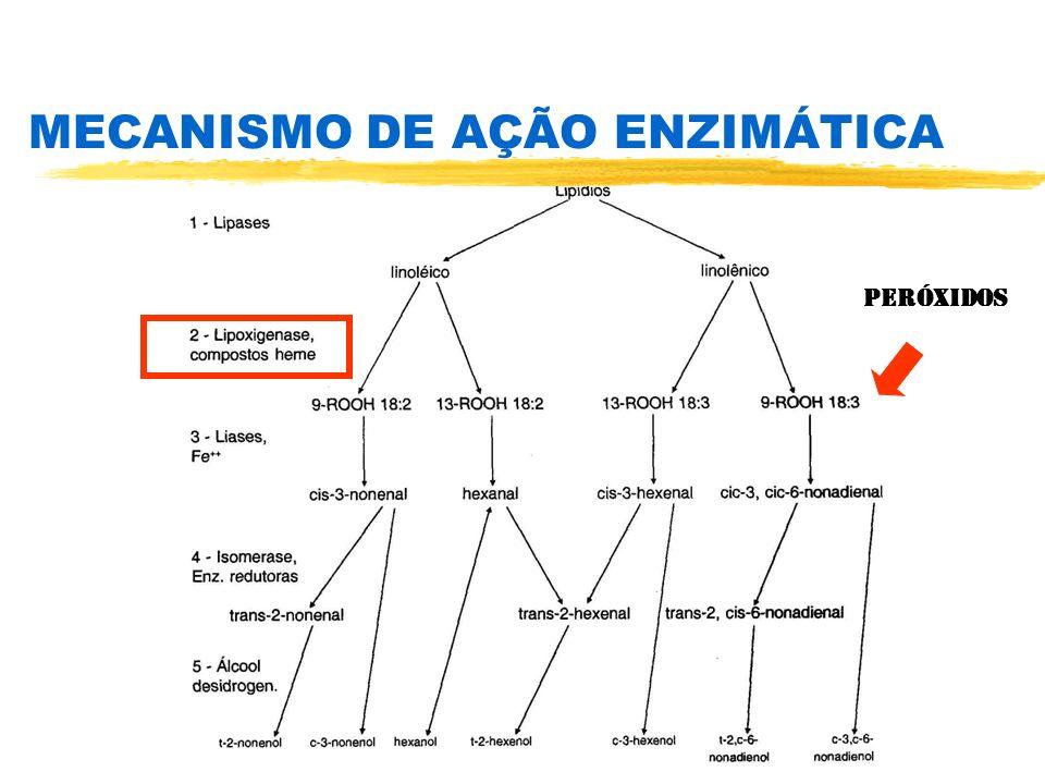 MECANISMO DE AÇÃO ENZIMÁTICA PERÓXIDOS