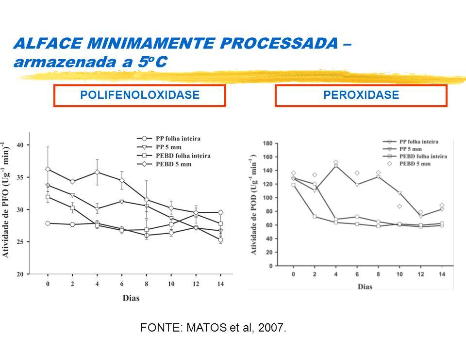 ALFACE MINIMAMENTE PROCESSADA – armazenada a 5 o C POLIFENOLOXIDASEPEROXIDASE FONTE: MATOS et al, 2007.