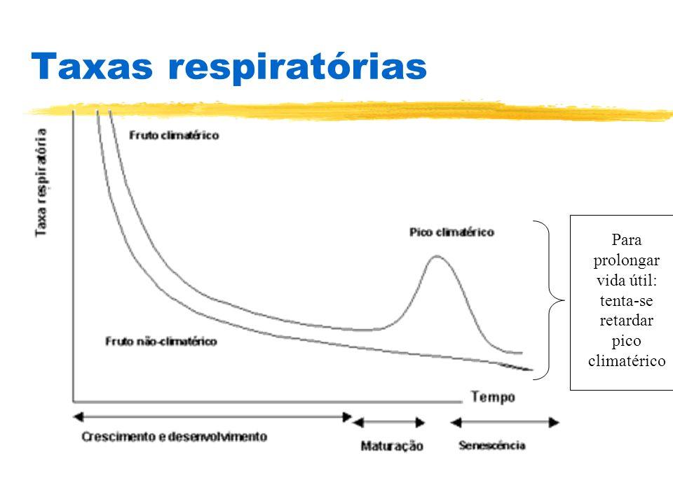 Taxas respiratórias Para prolongar vida útil: tenta-se retardar pico climatérico
