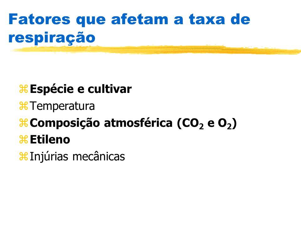 Fatores que afetam a taxa de respiração zEspécie e cultivar zTemperatura zComposição atmosférica (CO 2 e O 2 ) zEtileno zInjúrias mecânicas