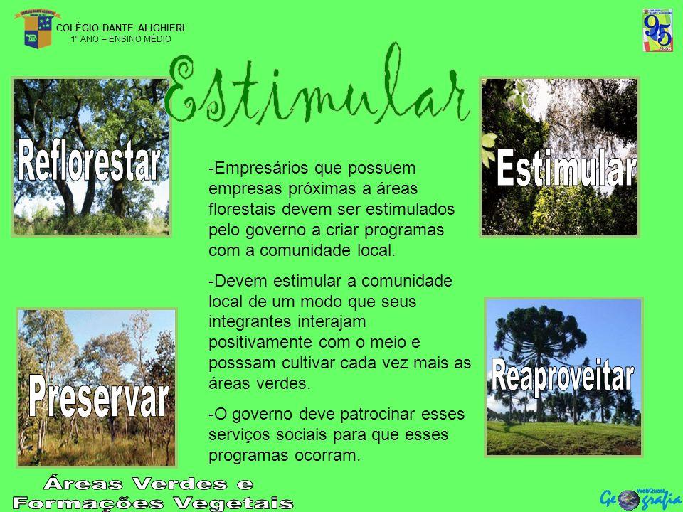 COLÉGIO DANTE ALIGHIERI 1º ANO – ENSINO MÉDIO -Empresários que possuem empresas próximas a áreas florestais devem ser estimulados pelo governo a criar programas com a comunidade local.