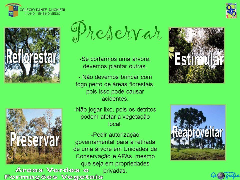 COLÉGIO DANTE ALIGHIERI 1º ANO – ENSINO MÉDIO -Se cortarmos uma árvore, devemos plantar outras.