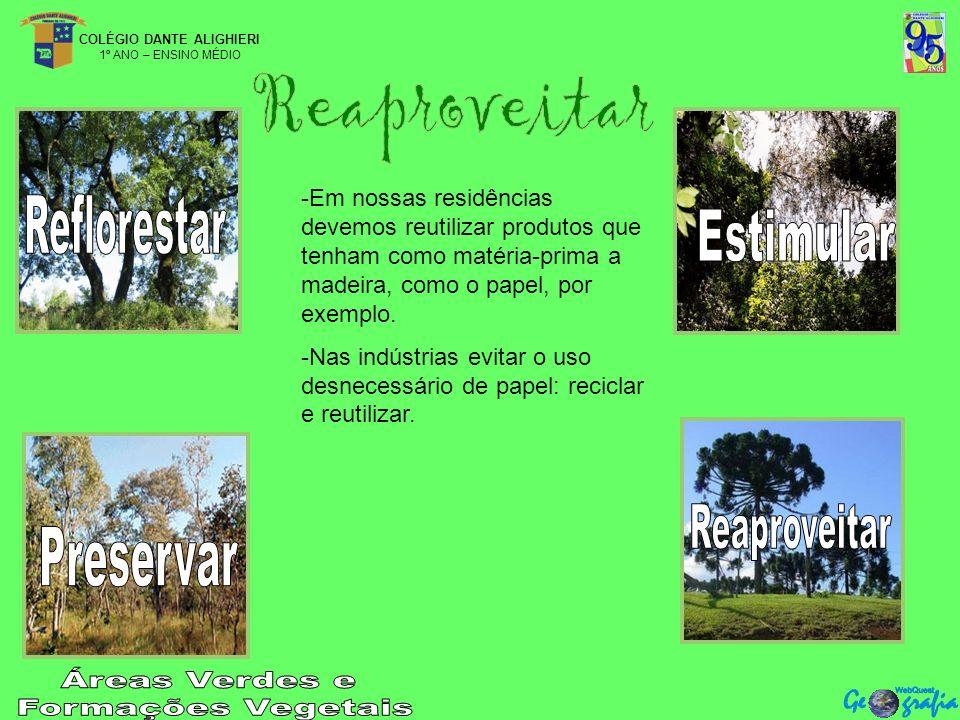 COLÉGIO DANTE ALIGHIERI 1º ANO – ENSINO MÉDIO -Em nossas residências devemos reutilizar produtos que tenham como matéria-prima a madeira, como o papel, por exemplo.