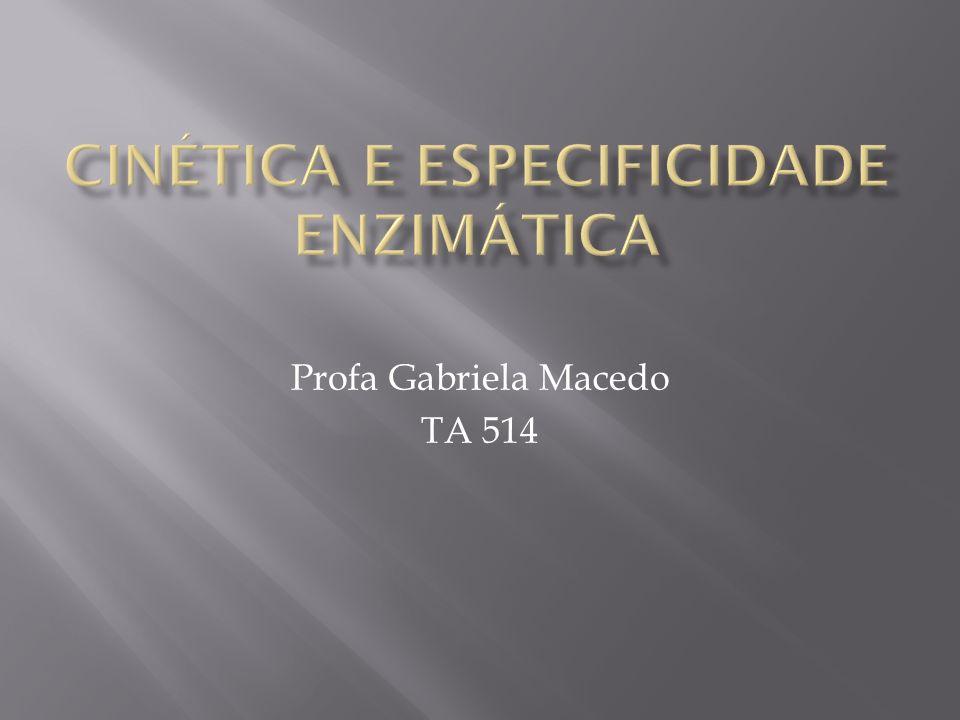 Profa Gabriela Macedo TA 514