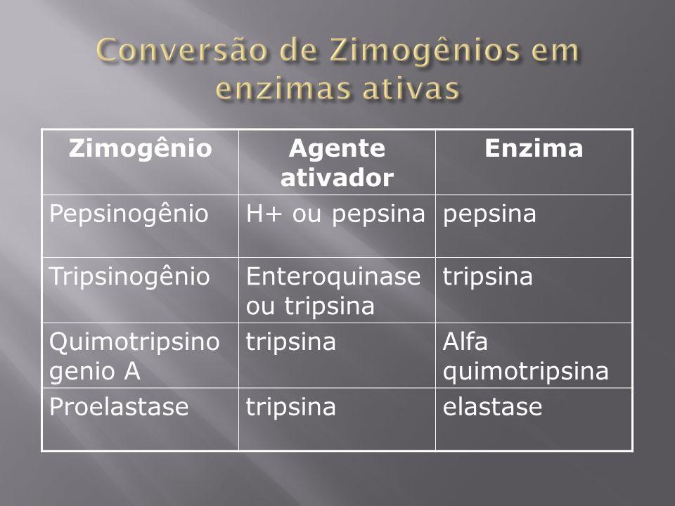 ZimogênioAgente ativador Enzima PepsinogênioH+ ou pepsinapepsina TripsinogênioEnteroquinase ou tripsina tripsina Quimotripsino genio A tripsinaAlfa qu