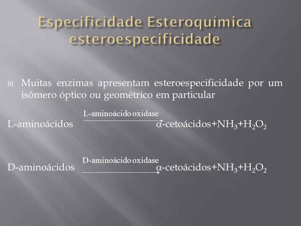 Muitas enzimas apresentam esteroespecificidade por um isômero óptico ou geométrico em particular L-aminoácidos -cetoácidos+NH 3 +H 2 O 2 D-aminoácidos