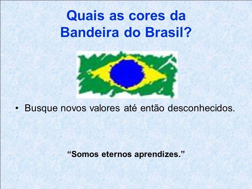 Quais as cores da Bandeira do Brasil. Busque novos valores até então desconhecidos.