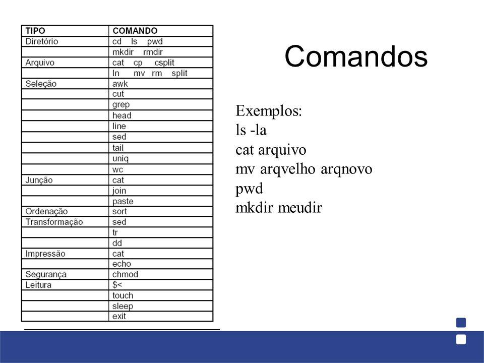 Comandos Exemplos: ls -la cat arquivo mv arqvelho arqnovo pwd mkdir meudir