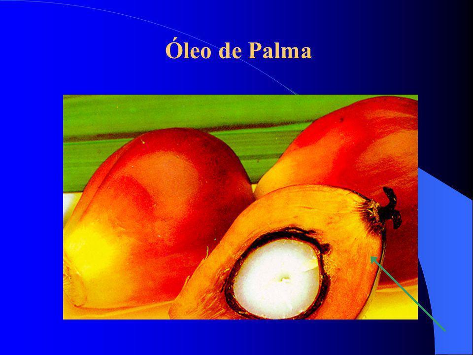 Soja no Brasil Soja no Brasil Exportação (mil ton.) ANO 1992 in natura 3.739 Farelo 8.431 Óleo 718 19963.64711.226 1.332 1.332 (Fonte: Soya & Oilseed Bluebook, 1999)
