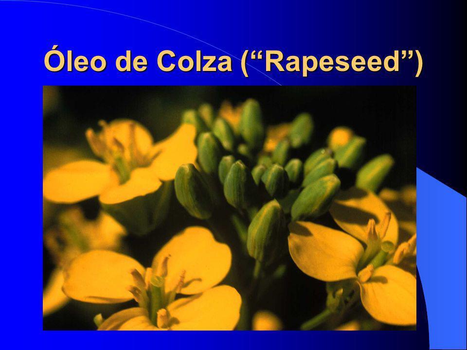 Óleo de Colza (Rapeseed)