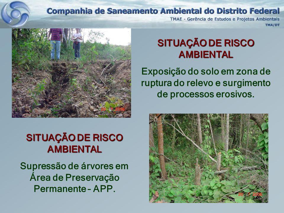 SITUAÇÃO DE RISCO AMBIENTAL Exposição do solo em zona de ruptura do relevo e surgimento de processos erosivos. SITUAÇÃO DE RISCO AMBIENTAL Supressão d