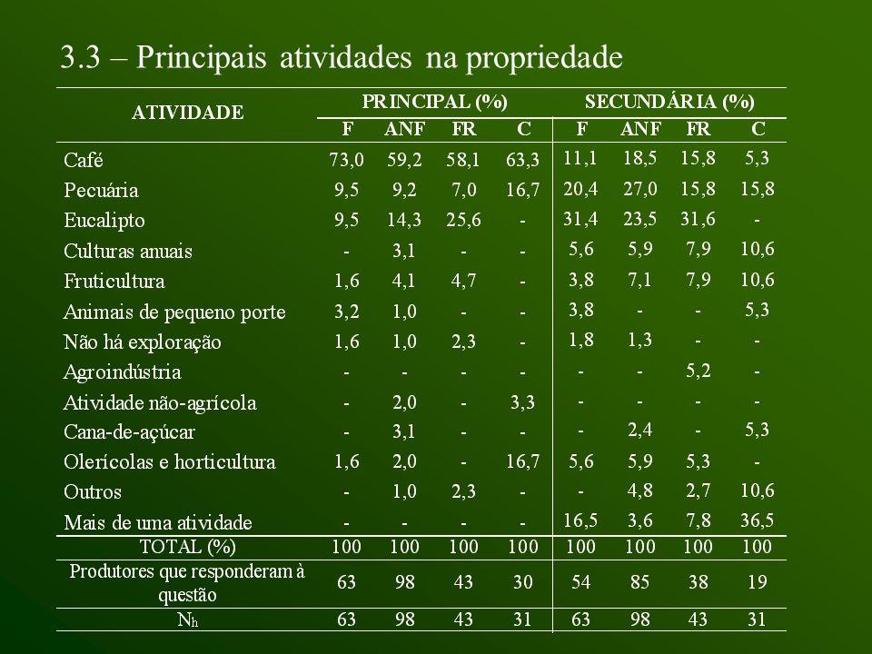 3.3 – Principais atividades na propriedade