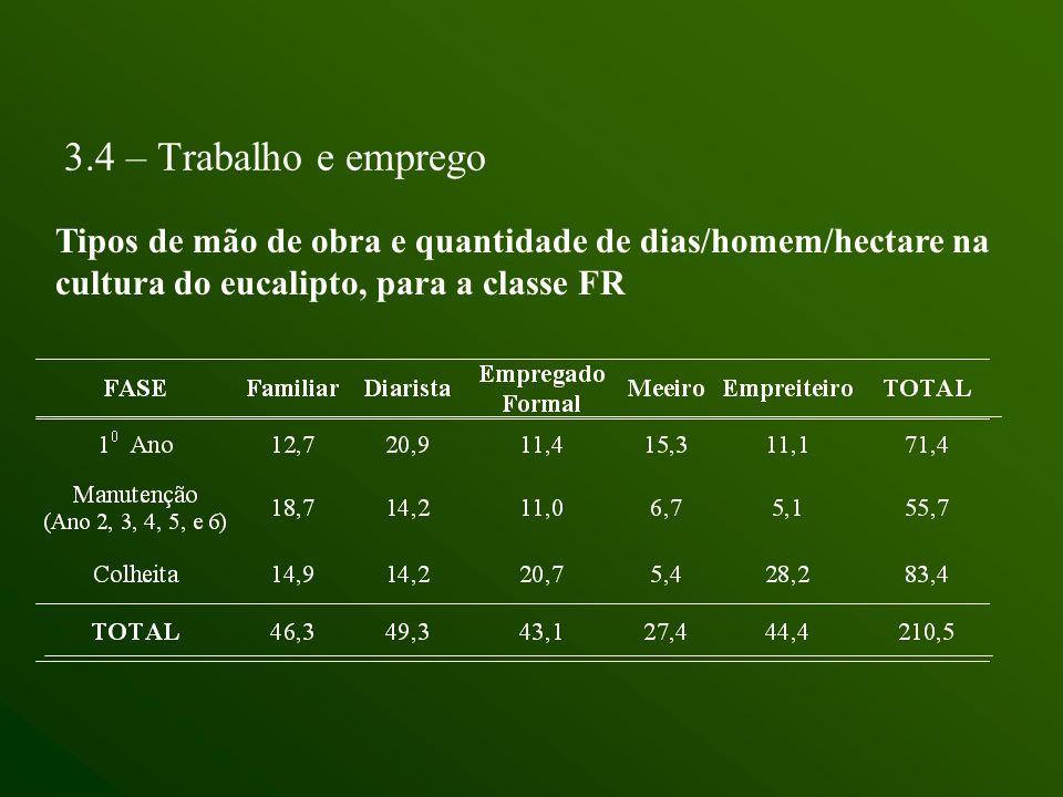 3.4 – Trabalho e emprego Tipos de mão de obra e quantidade de dias/homem/hectare na cultura do eucalipto, para a classe FR