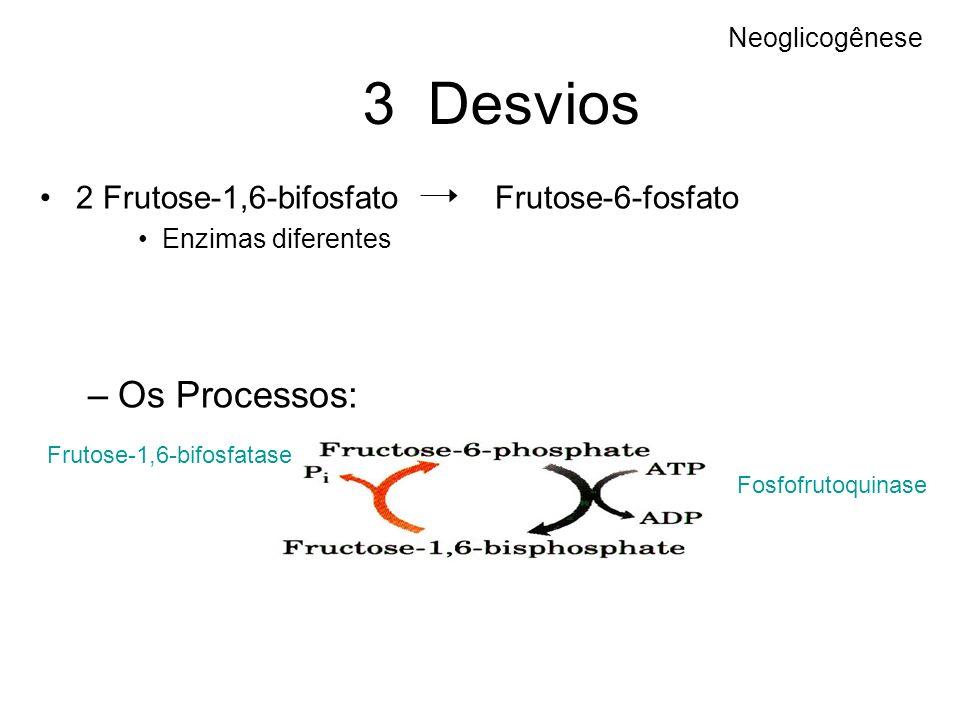 3 Desvios 2 Frutose-1,6-bifosfato Frutose-6-fosfato Enzimas diferentes –Os Processos: Neoglicogênese Fosfofrutoquinase Frutose-1,6-bifosfatase