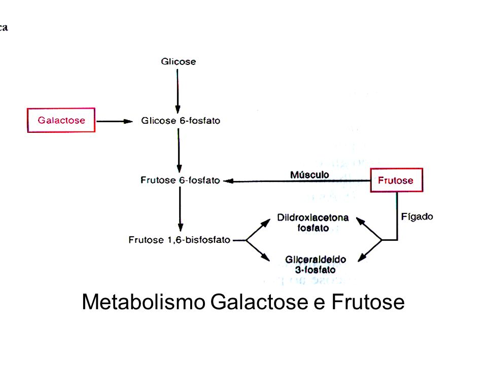 Galactosemia e intolerância à lactose 1.
