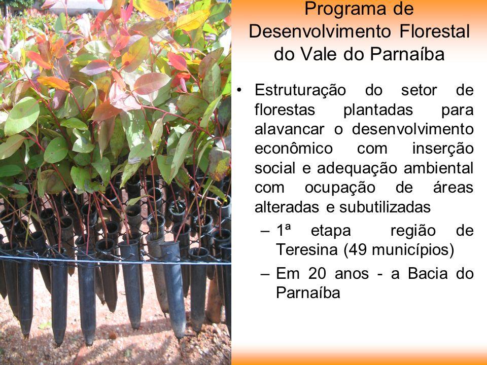 Programa de Desenvolvimento Florestal do Vale do Parnaíba Estruturação do setor de florestas plantadas para alavancar o desenvolvimento econômico com inserção social e adequação ambiental com ocupação de áreas alteradas e subutilizadas –1ª etapa região de Teresina (49 municípios) –Em 20 anos - a Bacia do Parnaíba
