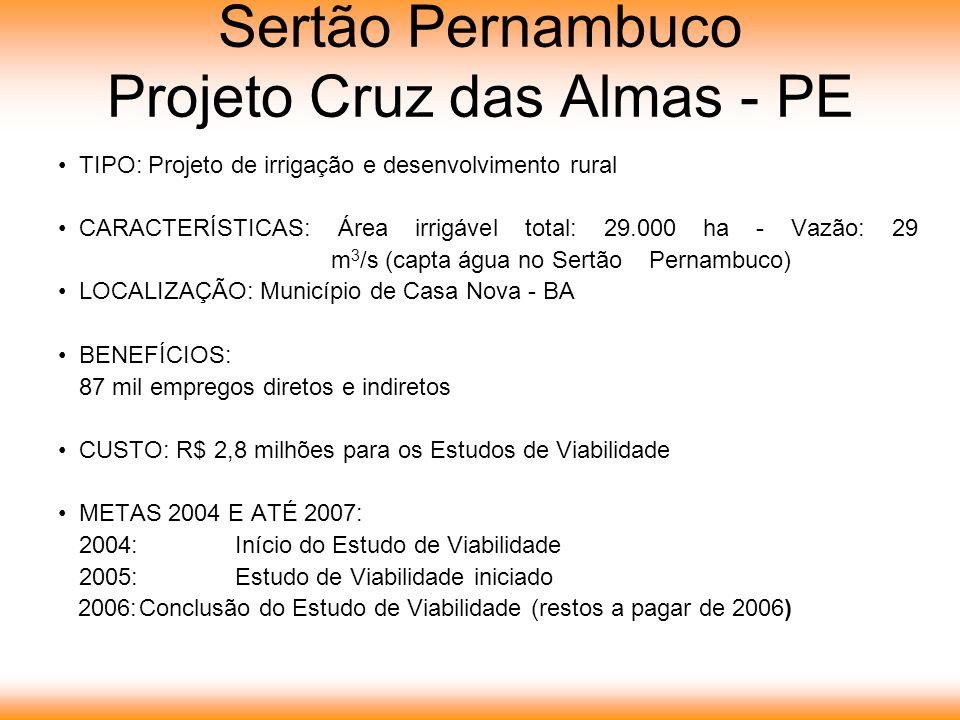 Sertão Pernambuco Projeto Cruz das Almas - PE TIPO: Projeto de irrigação e desenvolvimento rural CARACTERÍSTICAS: Área irrigável total: 29.000 ha - Vazão: 29 m 3 /s (capta água no Sertão Pernambuco) LOCALIZAÇÃO: Município de Casa Nova - BA BENEFÍCIOS: 87 mil empregos diretos e indiretos CUSTO: R$ 2,8 milhões para os Estudos de Viabilidade METAS 2004 E ATÉ 2007: 2004:Início do Estudo de Viabilidade 2005:Estudo de Viabilidade iniciado 2006:Conclusão do Estudo de Viabilidade (restos a pagar de 2006)