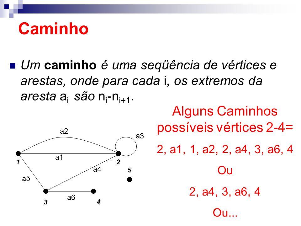 Um caminho é uma seqüência de vértices e arestas, onde para cada i, os extremos da aresta a i são n i -n i+1. Caminho 1 5 2 4 3 a5 a2 a1 a4 a3 a6 Algu