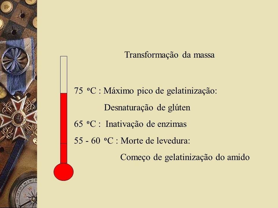 Transformação da massa 75 o C : Máximo pico de gelatinização: Desnaturação de glúten 65 o C : Inativação de enzimas 55 - 60 o C : Morte de levedura: C