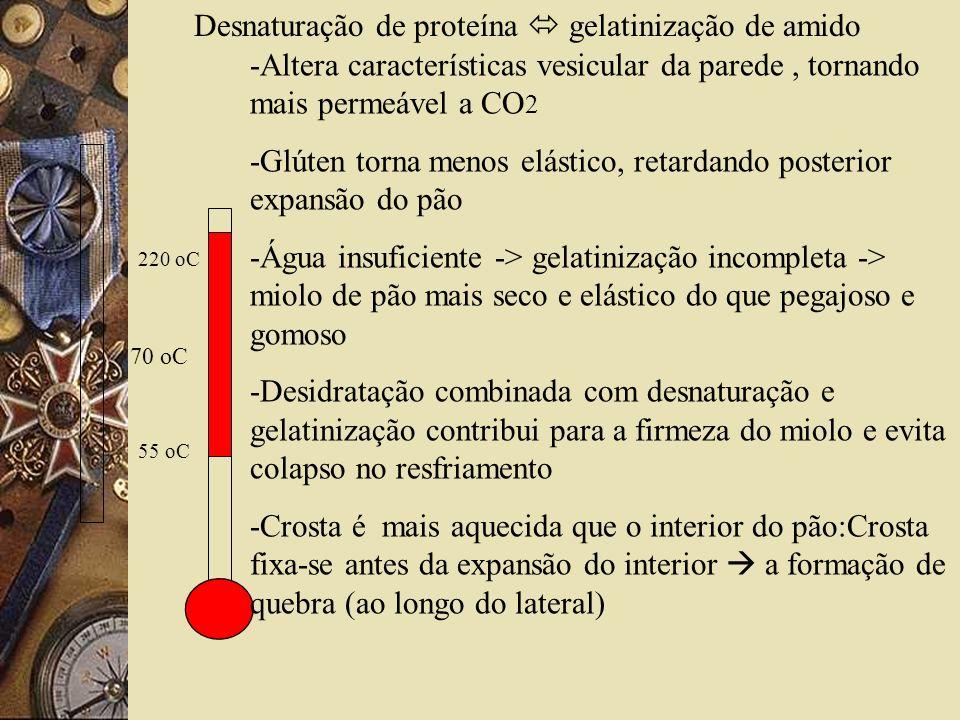 70 oC Desnaturação de proteína gelatinização de amido -Altera características vesicular da parede, tornando mais permeável a CO 2 -Glúten torna menos elástico, retardando posterior expansão do pão -Água insuficiente -> gelatinização incompleta -> miolo de pão mais seco e elástico do que pegajoso e gomoso -Desidratação combinada com desnaturação e gelatinização contribui para a firmeza do miolo e evita colapso no resfriamento -Crosta é mais aquecida que o interior do pão:Crosta fixa-se antes da expansão do interior a formação de quebra (ao longo do lateral) 220 oC 55 oC