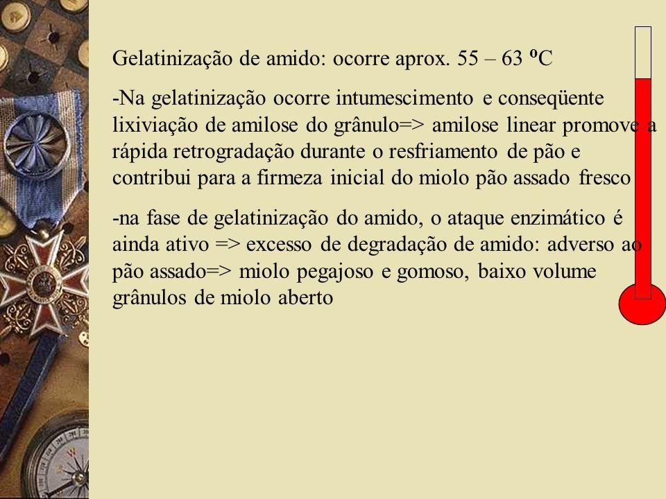 Gelatinização de amido: ocorre aprox. 55 – 63 o C -Na gelatinização ocorre intumescimento e conseqüente lixiviação de amilose do grânulo=> amilose lin