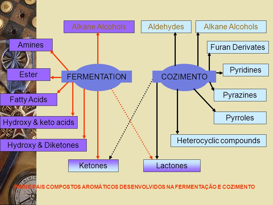 Alkane Alcohols FERMENTATION Aldehydes Amines Ester Fatty Acids Lactones Hydroxy & keto acids Hydroxy & Diketones Furan Derivates Pyridines Heterocyclic compounds PRINCIPAIS COMPOSTOS AROMÁTICOS DESENVOLVIDOS NA FERMENTAÇÃO E COZIMENTO COZIMENTO Ketones Alkane Alcohols Pyrazines Pyrroles