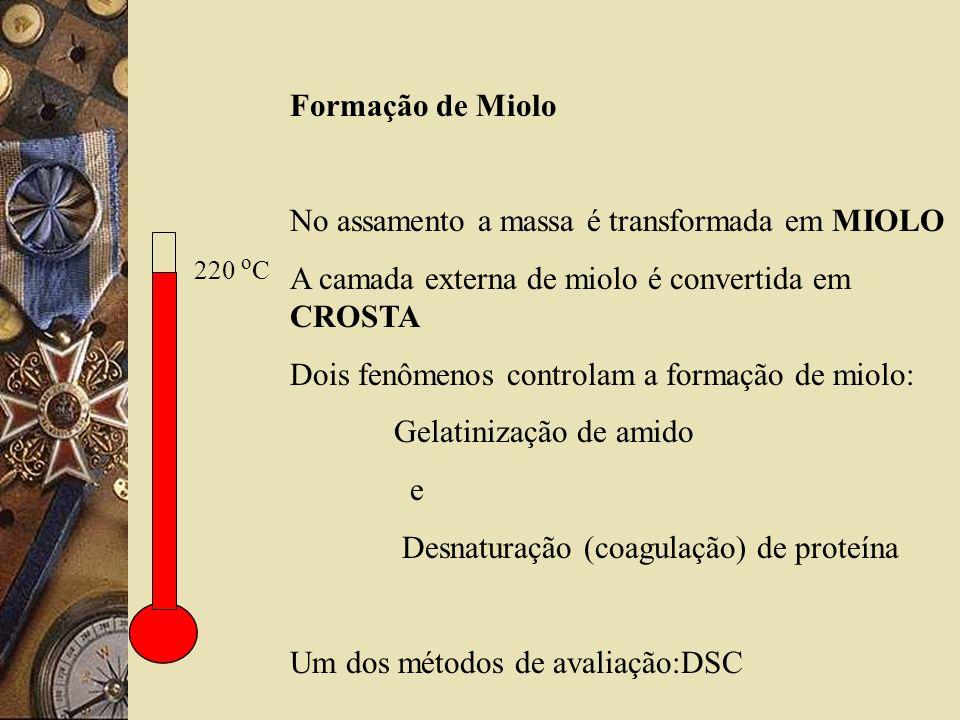 220 o C Formação de Miolo No assamento a massa é transformada em MIOLO A camada externa de miolo é convertida em CROSTA Dois fenômenos controlam a formação de miolo: Gelatinização de amido e Desnaturação (coagulação) de proteína Um dos métodos de avaliação:DSC
