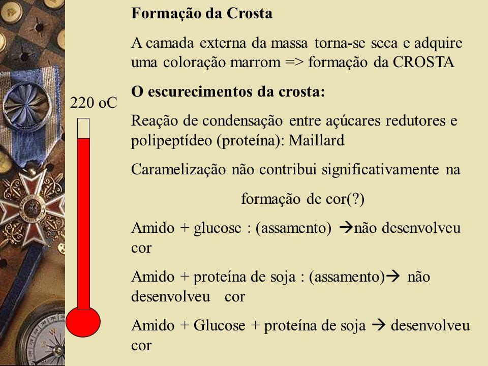 220 oC Formação da Crosta A camada externa da massa torna-se seca e adquire uma coloração marrom => formação da CROSTA O escurecimentos da crosta: Reação de condensação entre açúcares redutores e polipeptídeo (proteína): Maillard Caramelização não contribui significativamente na formação de cor(?) Amido + glucose : (assamento) não desenvolveu cor Amido + proteína de soja : (assamento) não desenvolveu cor Amido + Glucose + proteína de soja desenvolveu cor