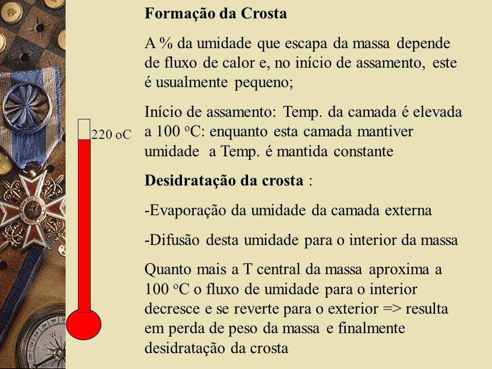 220 oC Formação da Crosta A % da umidade que escapa da massa depende de fluxo de calor e, no início de assamento, este é usualmente pequeno; Início de assamento: Temp.