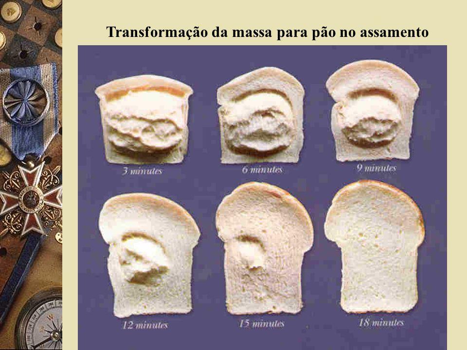 Transformação da massa para pão no assamento