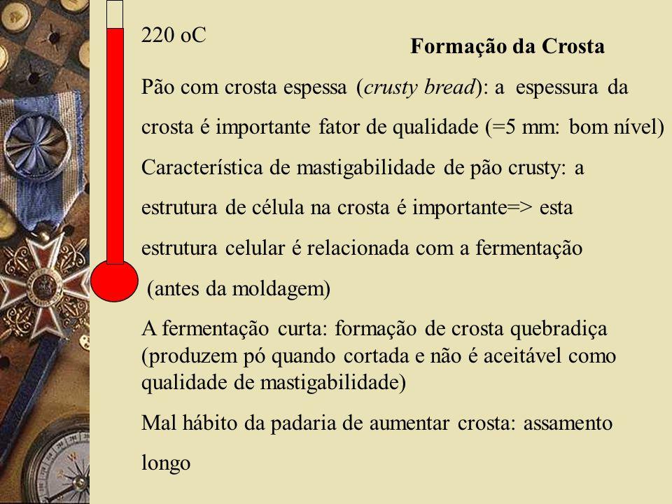 220 oC Formação da Crosta Pão com crosta espessa (crusty bread): a espessura da crosta é importante fator de qualidade (=5 mm: bom nível) Característica de mastigabilidade de pão crusty: a estrutura de célula na crosta é importante=> esta estrutura celular é relacionada com a fermentação (antes da moldagem) A fermentação curta: formação de crosta quebradiça (produzem pó quando cortada e não é aceitável como qualidade de mastigabilidade) Mal hábito da padaria de aumentar crosta: assamento longo