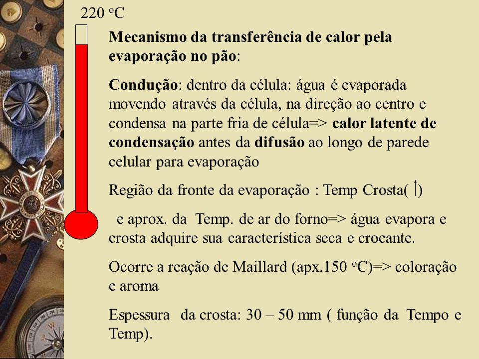 220 o C Mecanismo da transferência de calor pela evaporação no pão: Condução: dentro da célula: água é evaporada movendo através da célula, na direção ao centro e condensa na parte fria de célula=> calor latente de condensação antes da difusão ao longo de parede celular para evaporação Região da fronte da evaporação : Temp Crosta( ) e aprox.