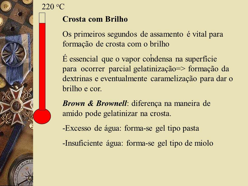 220 o C Crosta com Brilho Os primeiros segundos de assamento é vital para formação de crosta com o brilho É essencial que o vapor condensa na superfíc
