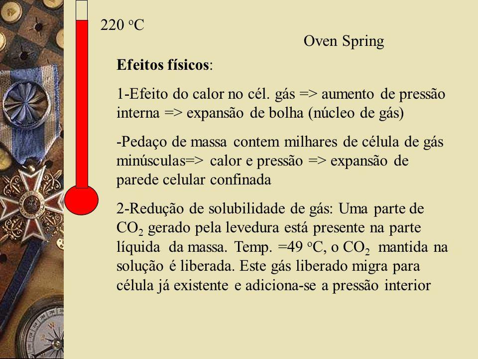 220 o C Efeitos físicos: 1-Efeito do calor no cél. gás => aumento de pressão interna => expansão de bolha (núcleo de gás) -Pedaço de massa contem milh