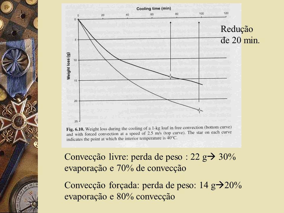Convecção livre: perda de peso : 22 g 30% evaporação e 70% de convecção Convecção forçada: perda de peso: 14 g 20% evaporação e 80% convecção Redução de 20 min.