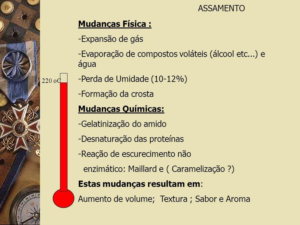 220 oC ASSAMENTO Mudanças Física : -Expansão de gás -Evaporação de compostos voláteis (álcool etc...) e água -Perda de Umidade (10-12%) -Formação da crosta Mudanças Químicas: -Gelatinização do amido -Desnaturação das proteínas -Reação de escurecimento não enzimático: Maillard e ( Caramelização ?) Estas mudanças resultam em: Aumento de volume; Textura ; Sabor e Aroma