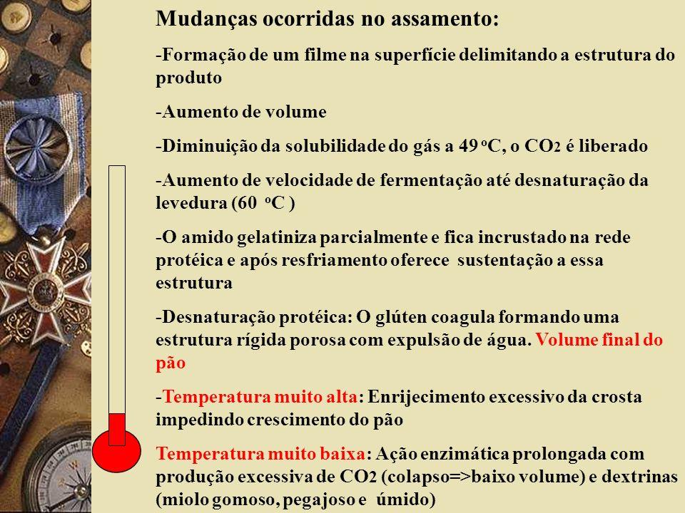 Mudanças ocorridas no assamento: -Formação de um filme na superfície delimitando a estrutura do produto -Aumento de volume -Diminuição da solubilidade do gás a 49 o C, o CO 2 é liberado -Aumento de velocidade de fermentação até desnaturação da levedura (60 o C ) -O amido gelatiniza parcialmente e fica incrustado na rede protéica e após resfriamento oferece sustentação a essa estrutura -Desnaturação protéica: O glúten coagula formando uma estrutura rígida porosa com expulsão de água.