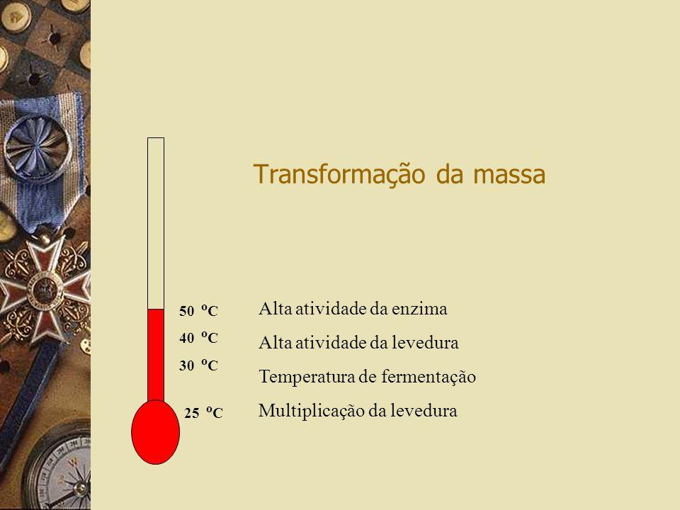 Transformação da massa Alta atividade da enzima Alta atividade da levedura Temperatura de fermentação Multiplicação da levedura 25 o C 50 o C 40 o C 30 o C